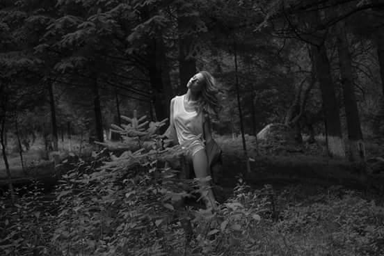 Imagen de portada de Doncella Diamon